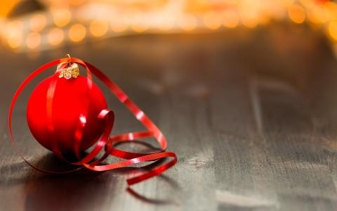 Menús de empresa – Navidad 2016